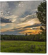 Sunset Over Lupine Fields Canvas Print