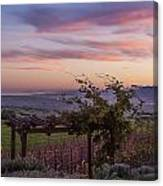 Sunset Over Sonoma Coast Canvas Print