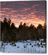 Sunset Over The Winter Forest Canvas Print