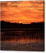 Sunset Over Tiny Marsh Canvas Print