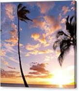 Sunset Palm Trees In Hawaii Canvas Print