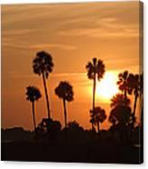 Sunset Palms 1 Canvas Print