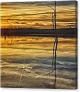 Sunset Riverlands West Alton Mo Dsc03317 Canvas Print
