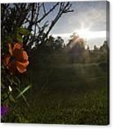 Sunset Roses Canvas Print