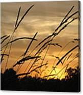 Sunset Sentinels Canvas Print