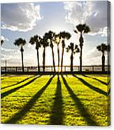 Sunset Sentinels Canvas Print