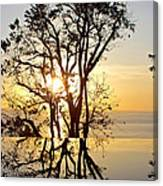 Sunset Silhouette And Reflections Canvas Print