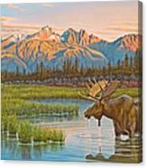 Sunset Solitude     Canvas Print