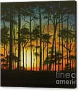 Sunset Over St. Joseph's Peninsula Canvas Print
