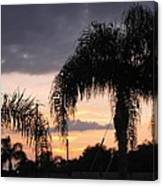 Sunset Through The Palms Canvas Print