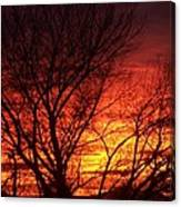 Sunset Tree Canvas Print