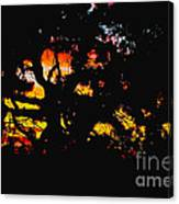 Sunset Viewed Through A Tree Canvas Print