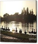 Sunset With Geese On The Thames Canvas Print