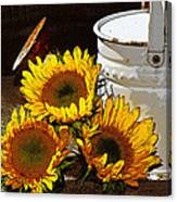 Sunshine From The Garden Canvas Print