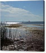 Sunshine On The Bay Canvas Print