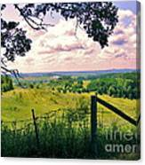 Sunshine On The Meadow Canvas Print