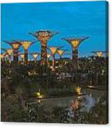Supertrees Canvas Print