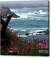 Surf And Turf Canvas Print