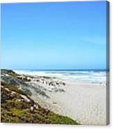 Surf Beach Lompoc California Canvas Print