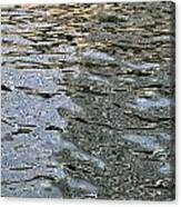 Surface Glide Canvas Print