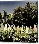 Surfboard Fence - Old Postcard Canvas Print