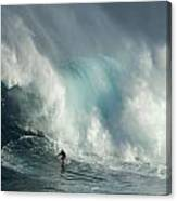 Surfing Jaws The Wild Side Canvas Print