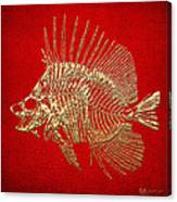 Surgeonfish Skeleton In Gold On Red  Canvas Print