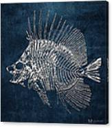 Surgeonfish Skeleton In Silver On Blue  Canvas Print