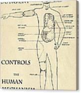 Surgery Controls The Human Mechanism   1906 Canvas Print