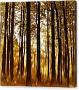 Surreal Autumn Canvas Print
