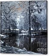 Surreal Dreamy Fantasy Nature Infrared Landscape - Edisto Park South Carolina Canvas Print