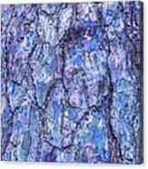 Surreal Patterned Bark In Blue Canvas Print