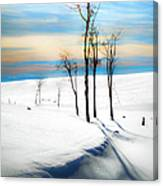 Surreal Snowscape Canvas Print