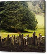 Surrounding The Pasture Canvas Print