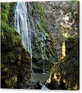 Susan Creek Falls Series 3 Canvas Print
