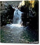 Susan Creek Falls Series 4 Canvas Print