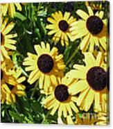 Susans Black Eye #1 20140831 Canvas Print