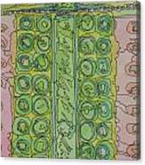 Sushi Olives Canvas Print