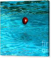 Suspended Apple Canvas Print