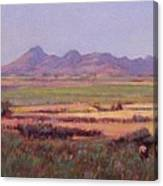 Sutter Buttes In Summer Afternoon Canvas Print