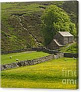 Swaledale Landscape Canvas Print