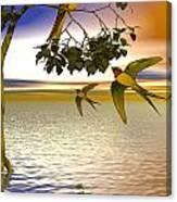 Swallows At Sunset Canvas Print