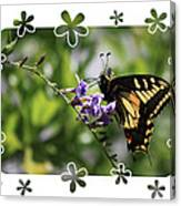 Swallowtail 4 With Flower Framing Canvas Print