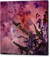 Swallowtail In The Butterfly Bush - Featured In The Wildlife And Comfortable Art And Newbies Groups Canvas Print
