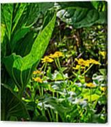 Swamp Bouquet Canvas Print