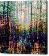 Swamp Colorfest Canvas Print