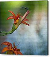 The Wood Lily And Dragon Fly Canvas Print