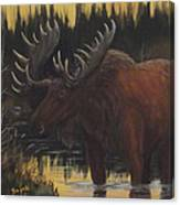 Swamp Moose Canvas Print