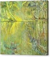 Swamp Sun Canvas Print