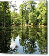 Swampland Reflection At The Plantation Canvas Print